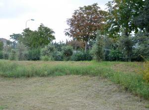 Parco settembre - ottobre 2018